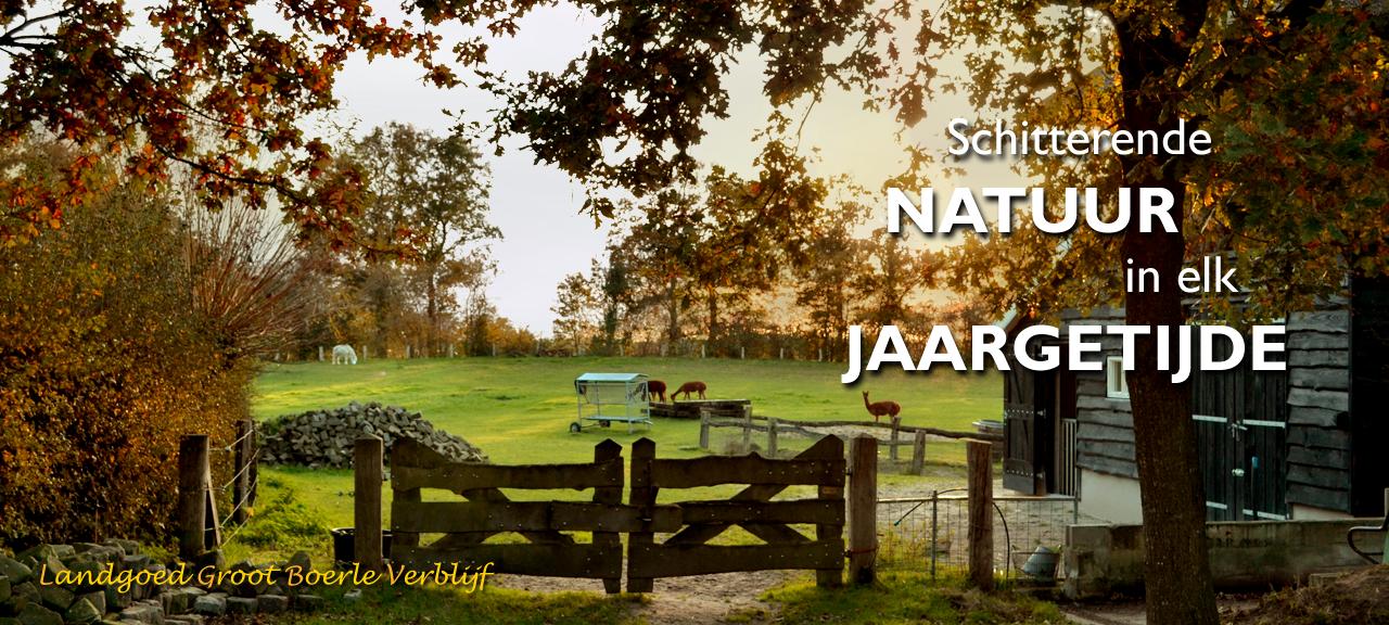 Banner-Schitterende-Natuur-In-Elk-Jaargetijde